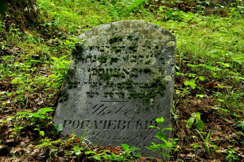 Zapomniany cmentarz karaimski z XIV w. Wiele starych nagrobków z napisami w różnych językach i alfabetach.
