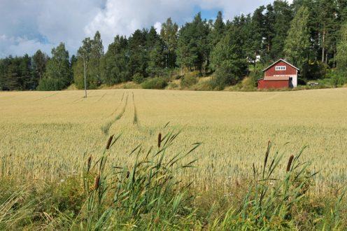 Finlandia – Suomi – Wokół Zatoki Botnickiej