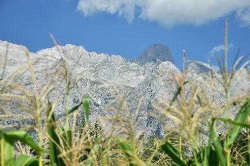 Treki w albańskich Prokletije
