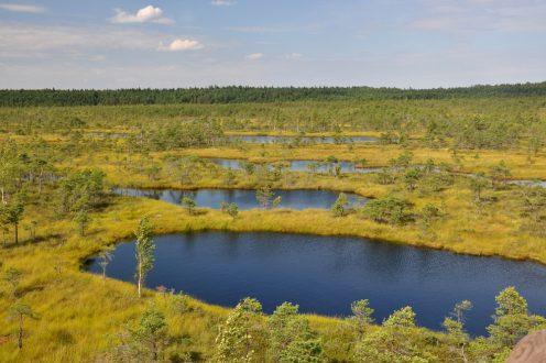 Łotwa – co i jak na Via Baltica