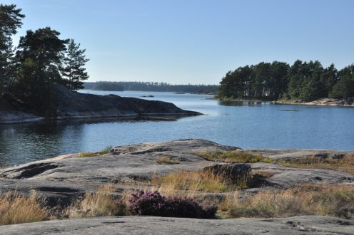 Szwecja – co i jak wokół Zatoki Botnickiej