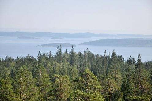 Park Narodowy Skuleskogen. Góry nad Bałtykiem