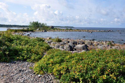 Estonia – co i jak na Via Baltica