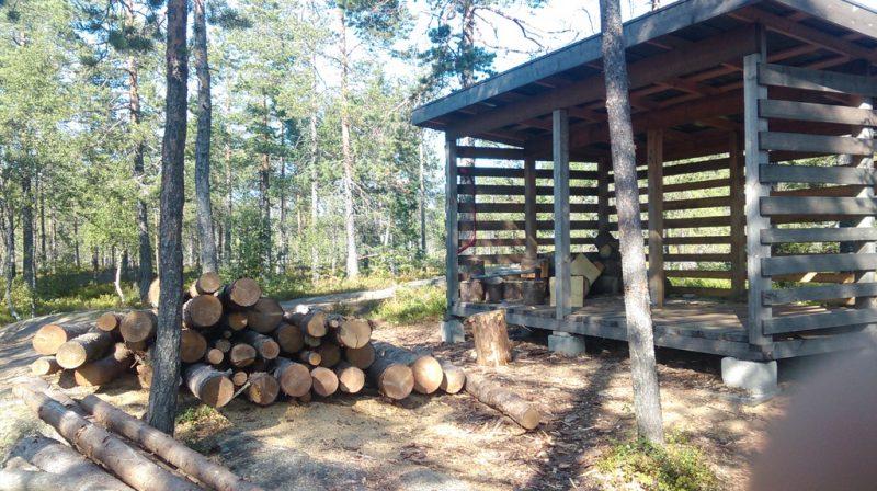 Zapas drewna w jednym z parków narodowych.
